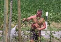 Bauhofmitarbeiter beim Wässern