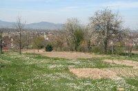 Blick über Hugstetten zum Kaiserstuhl 7.4.2007