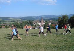 zeigt Leute beim Ausüben der Sportart Nordic-Walking