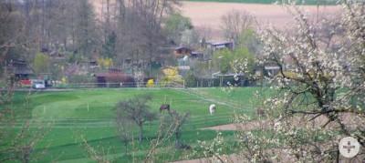 Ansicht Gartengelände