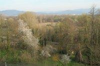 Blick auf Ried und Schwarzwald 5.4.2007