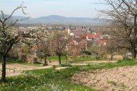 Blick vom Marchhügel auf Hugstetten 7.4.2007